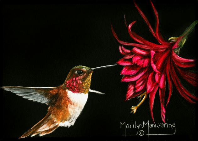 Hummer with Red Flower