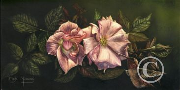 Rufous and Roses