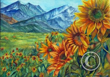 Sunflowers at Westcliffe